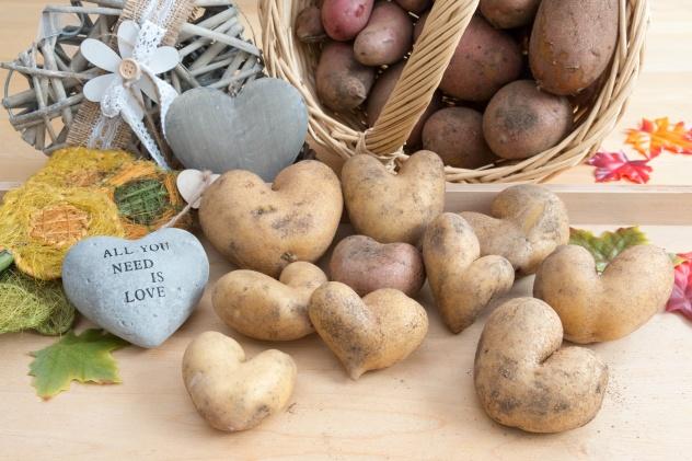 Herzkartoffeln